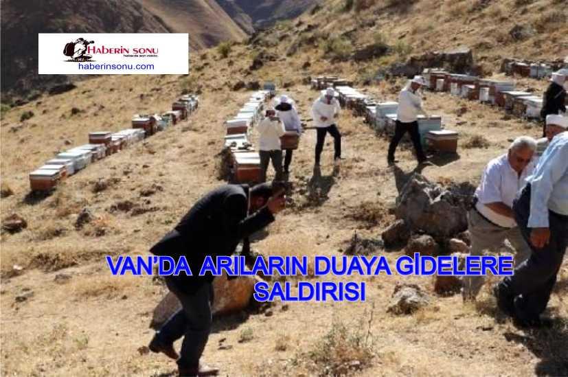 DUAYA GİDENLERE ARILAR SALDIRDI