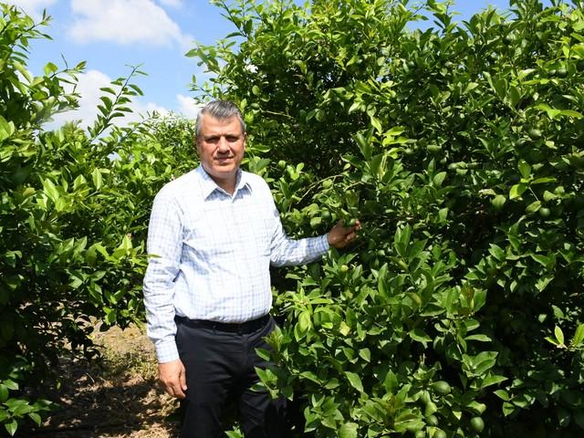 Ayhan Barut'tan portakal ihracatında analiz şartına tepki HABERİN SONU www.haberinsonu.com