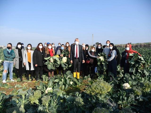 """Meryem Kadın Kooperatifi'nin Sarıçam ilçesinde açık alan tarımı yaptığı alanı ziyaret eden Adana Büyükşehir Belediye Başkanı Zeydan Karalar kadınlarla birlikte tarlaya girdi, hasat yaptı, bilgi verdi. Somut Bir """"Tarladan Sofraya"""" Uygulaması"""