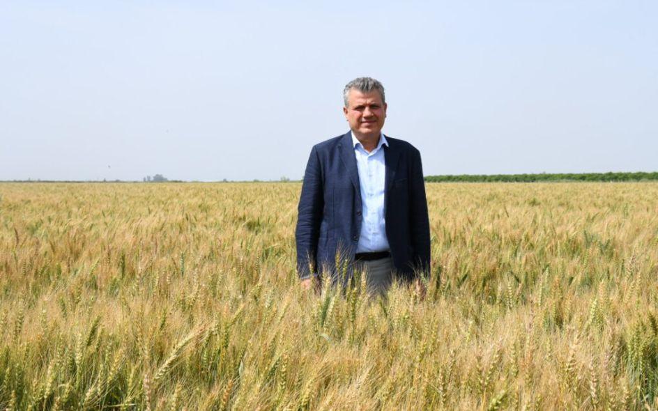 Buğdayda Taban Fiyat Açıklansın