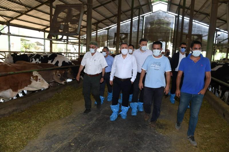 Vali Süleyman Elban, AB standartlarında süt üreten Ali Babanın Çiftliği'ni ziyaret etti