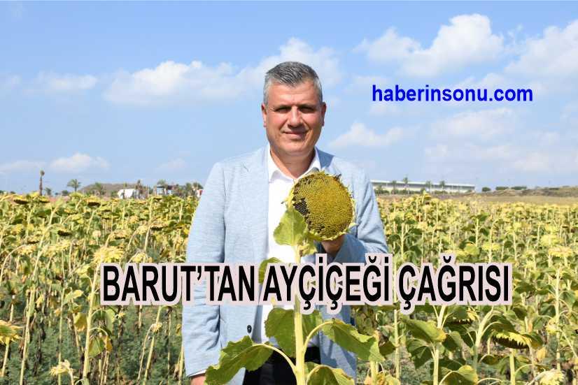 """Ayhan Barut Ayçiçeğinde üretimin 2 katı tüketim var"""""""