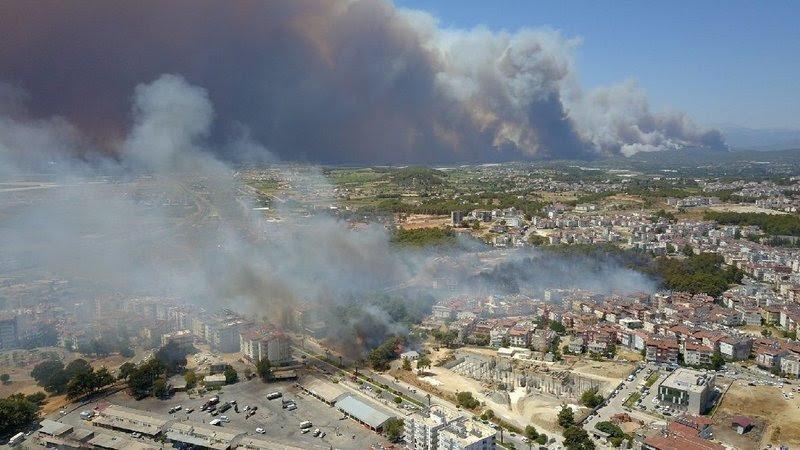 Türkiye Yanıyor: Orman Yangınlarına Karşı Acil Eylem Şimdi